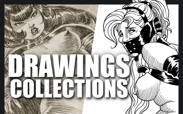Drawings collections title